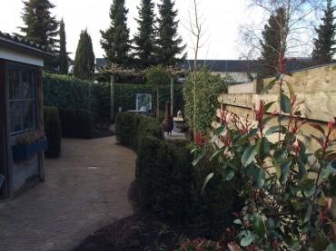 Tuin onderhoud particulier