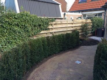IJsselmuiden tuin ontwerp