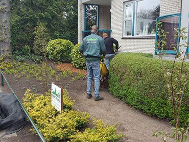 Vaassen tuin ontwerpers