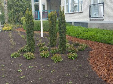 Tuin renovatie Vaassen