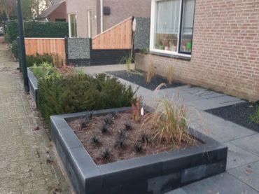 Tuinbouw Stedendriehoek